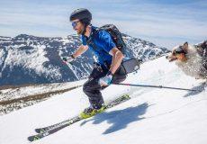 Skier avec son chien en toute sécurité.