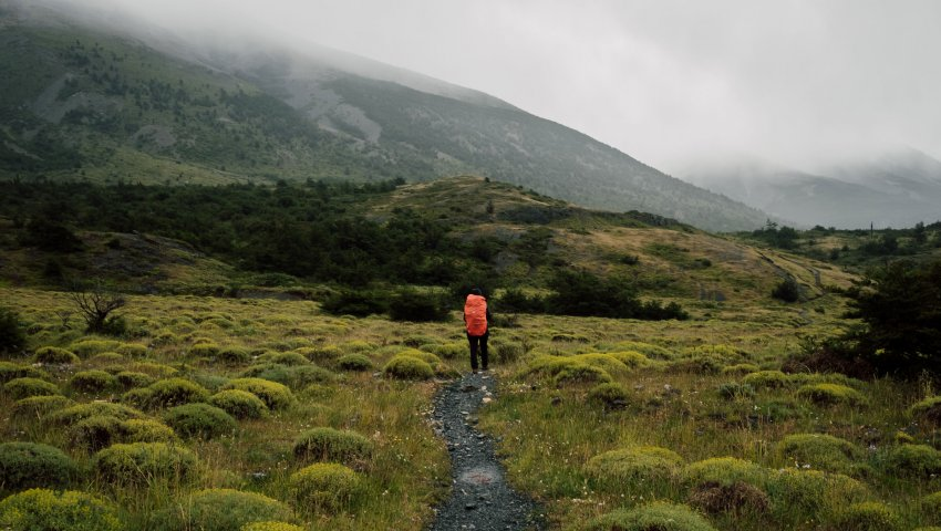 Un backpacker de dos sur un sentier
