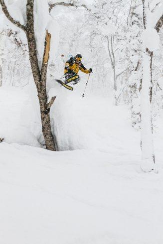 Un skieur dans la poudreuse de la forêt japonaise