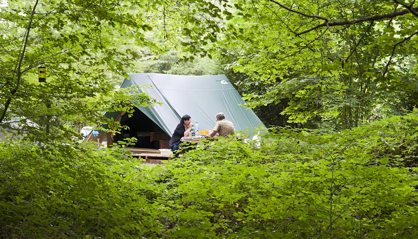 Où camper près d'Amsterdam, Florence ou Paris?