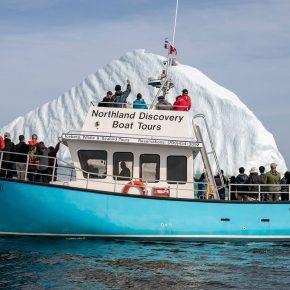 A St Anthony (Terre-Neuve-et-Labrador), ce bateau propose des balades de deux heures au milieu des icebergs qui fondent pour une quarantaine d'euros.