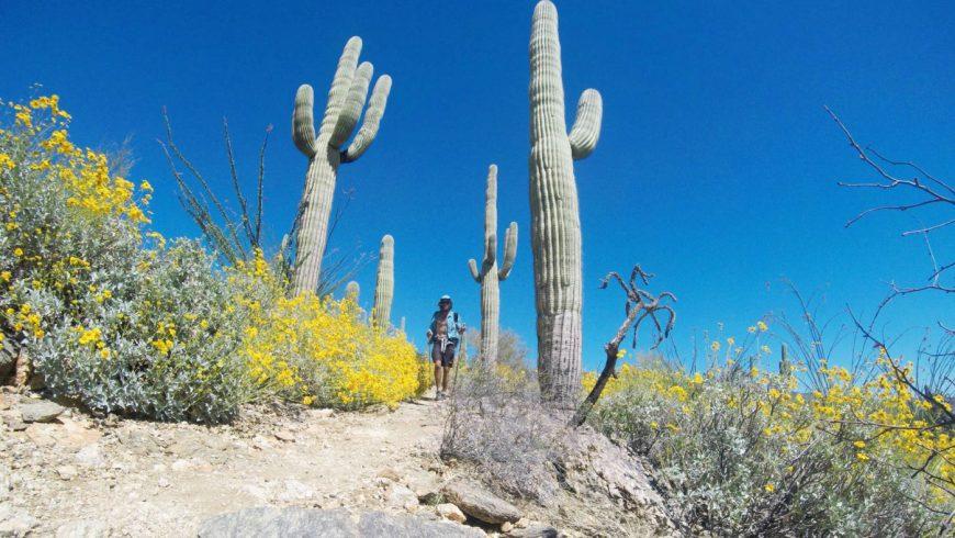 """Jeff """"Legend"""" Garmire sur l'Arizona Trail"""