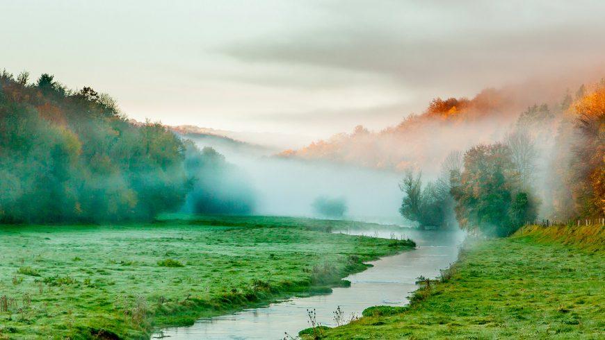 Parc National de forêt en Champagne et Bourgogne