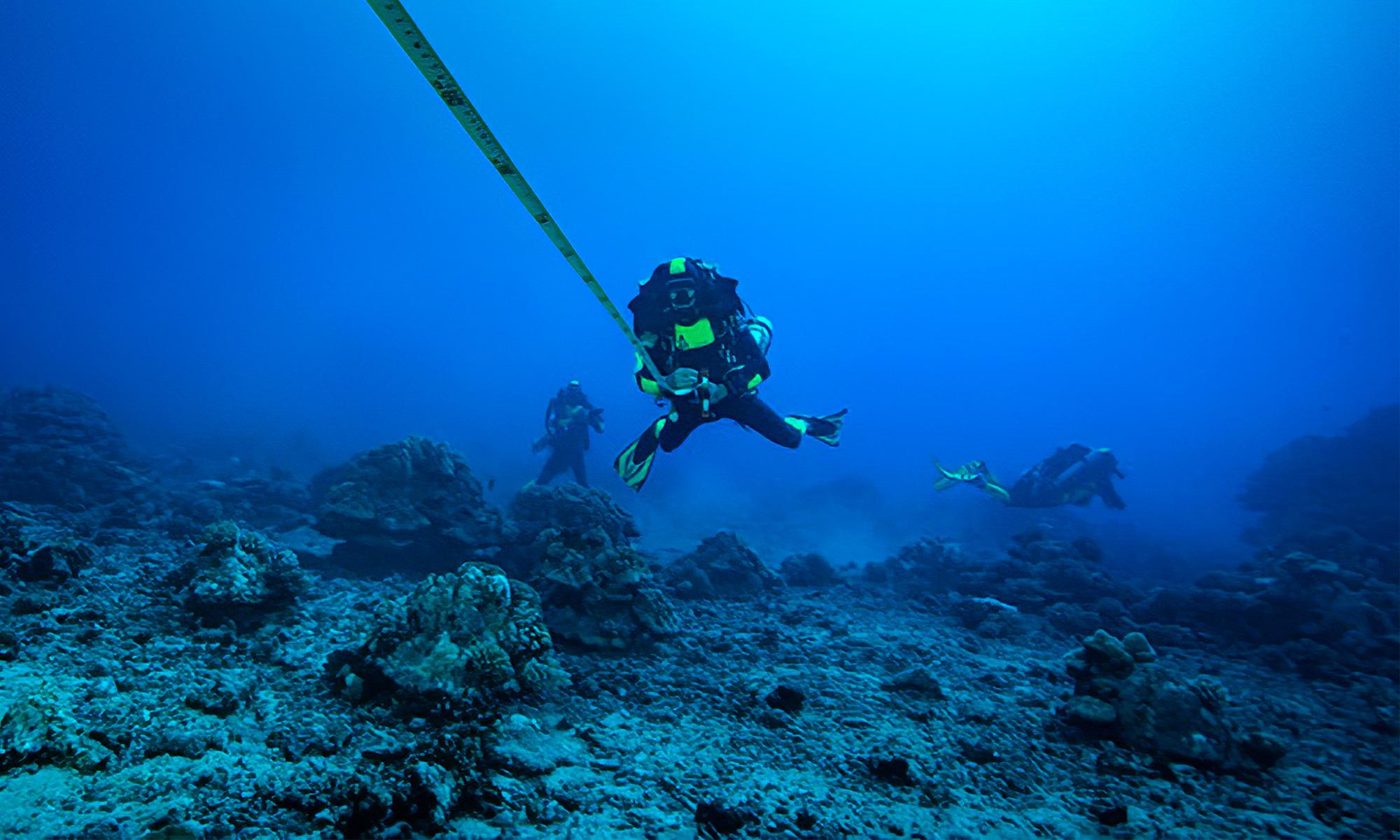 Under the pole III