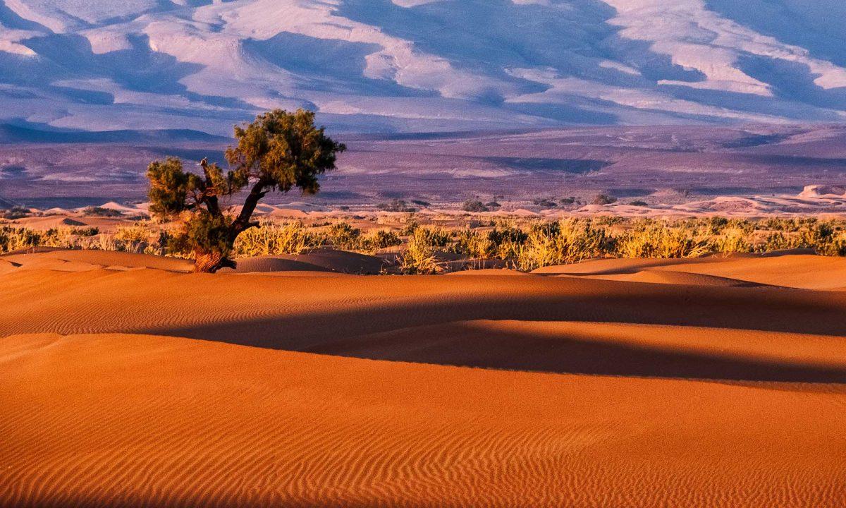 Tamnougalt, Maroc