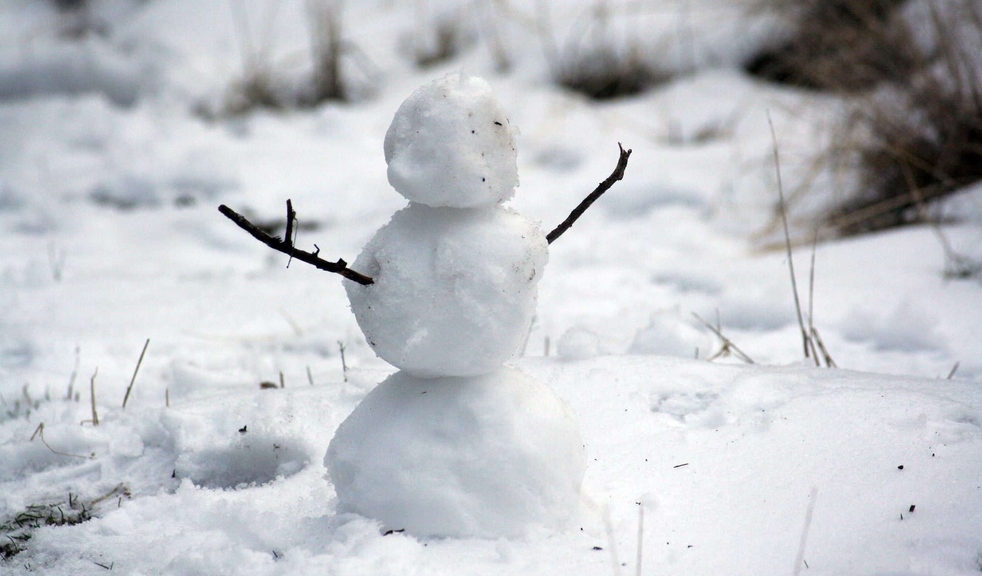 Bonhomme de neige Photo par Nathan Wolfe/Unsplash