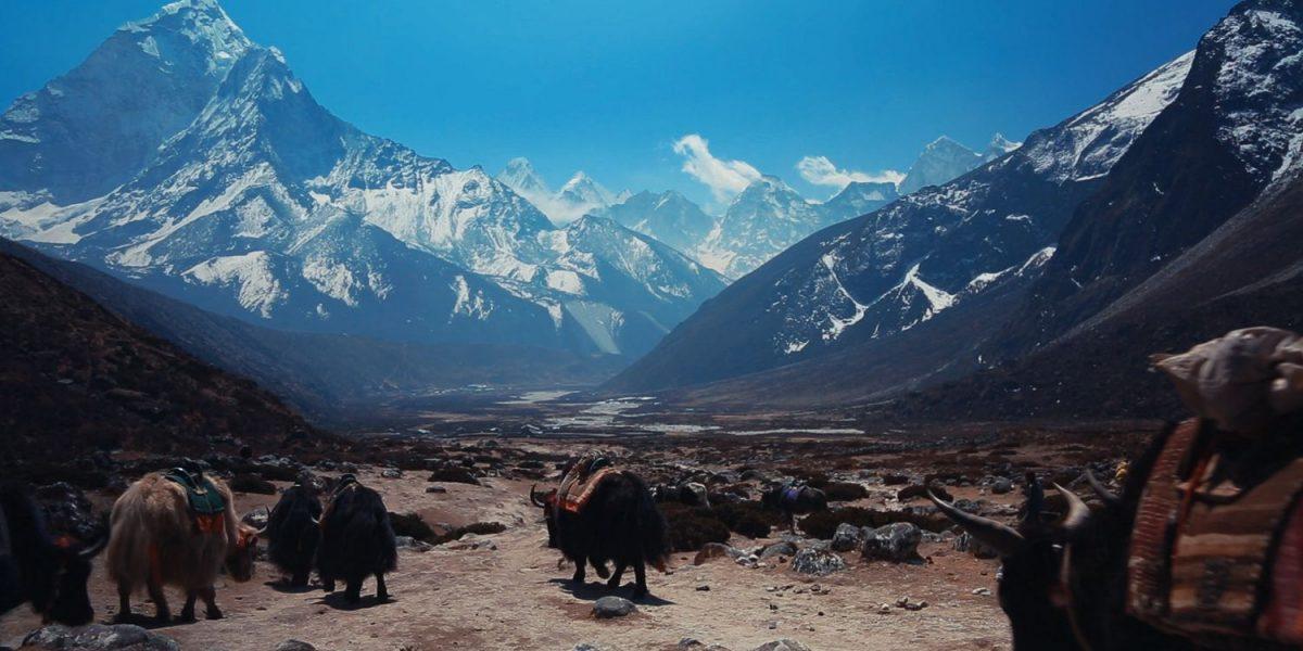 Vallée du Khumbu, Népal