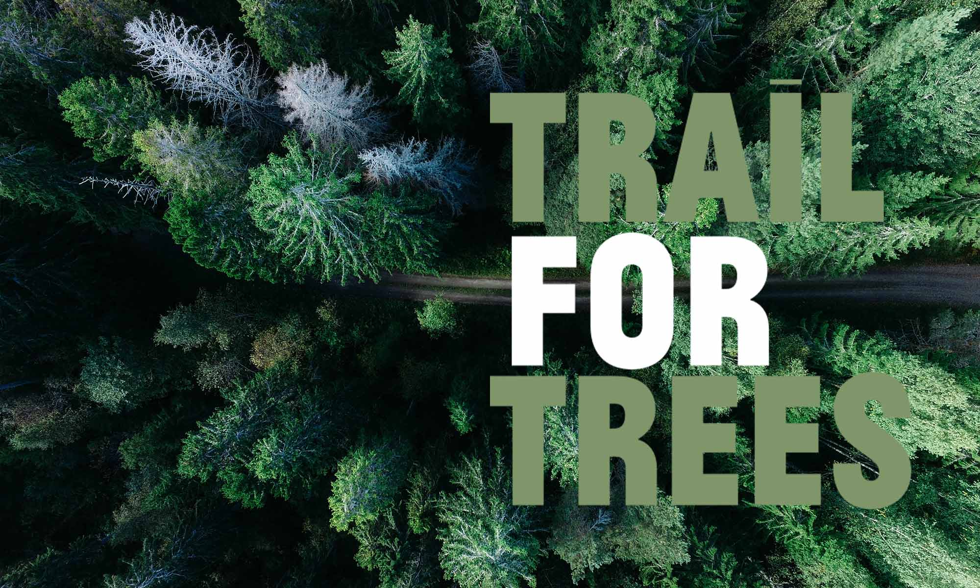 Trail for trees