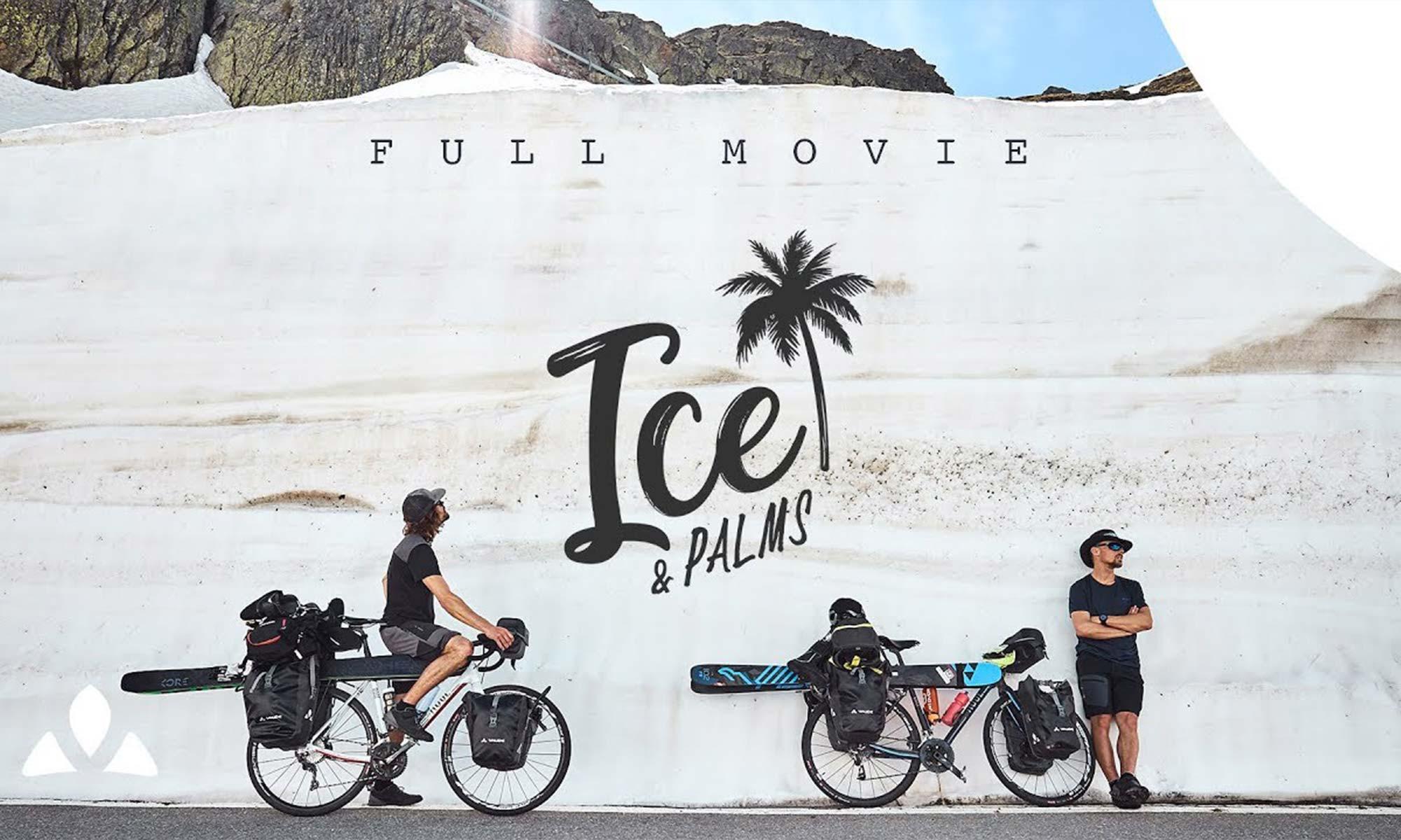 Ice Palms