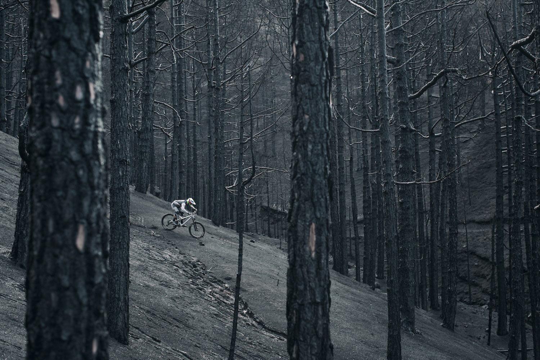 Les plus belles images de JB Lieutard