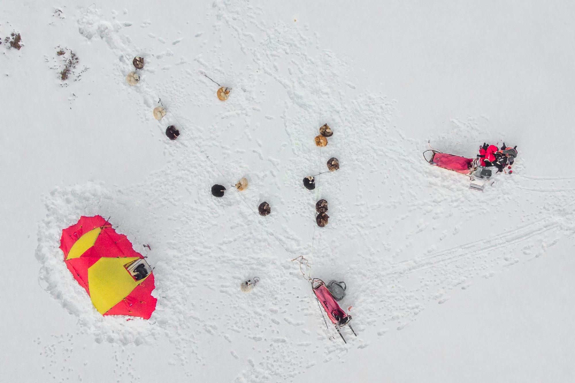 Lucas Lepage musher et guide en traineau à chiens en Norvège