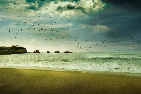 Va-t-on oui ou non pouvoir aller à la plage le 11 mai ?