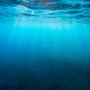 Microfibres dans l'océan
