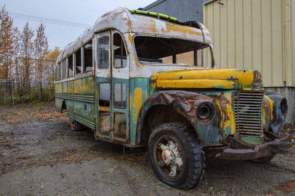 Magic Bus: Into the wild