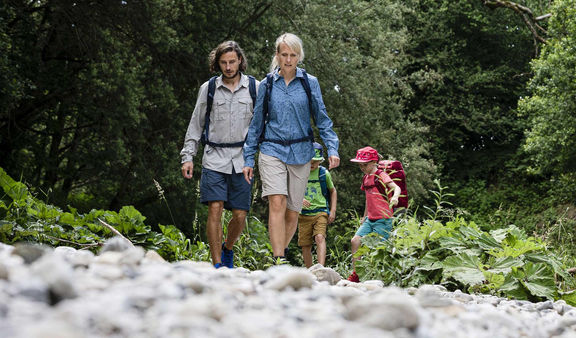 balade en famille en forêt