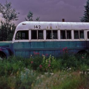 Magic Bus: Into the wild