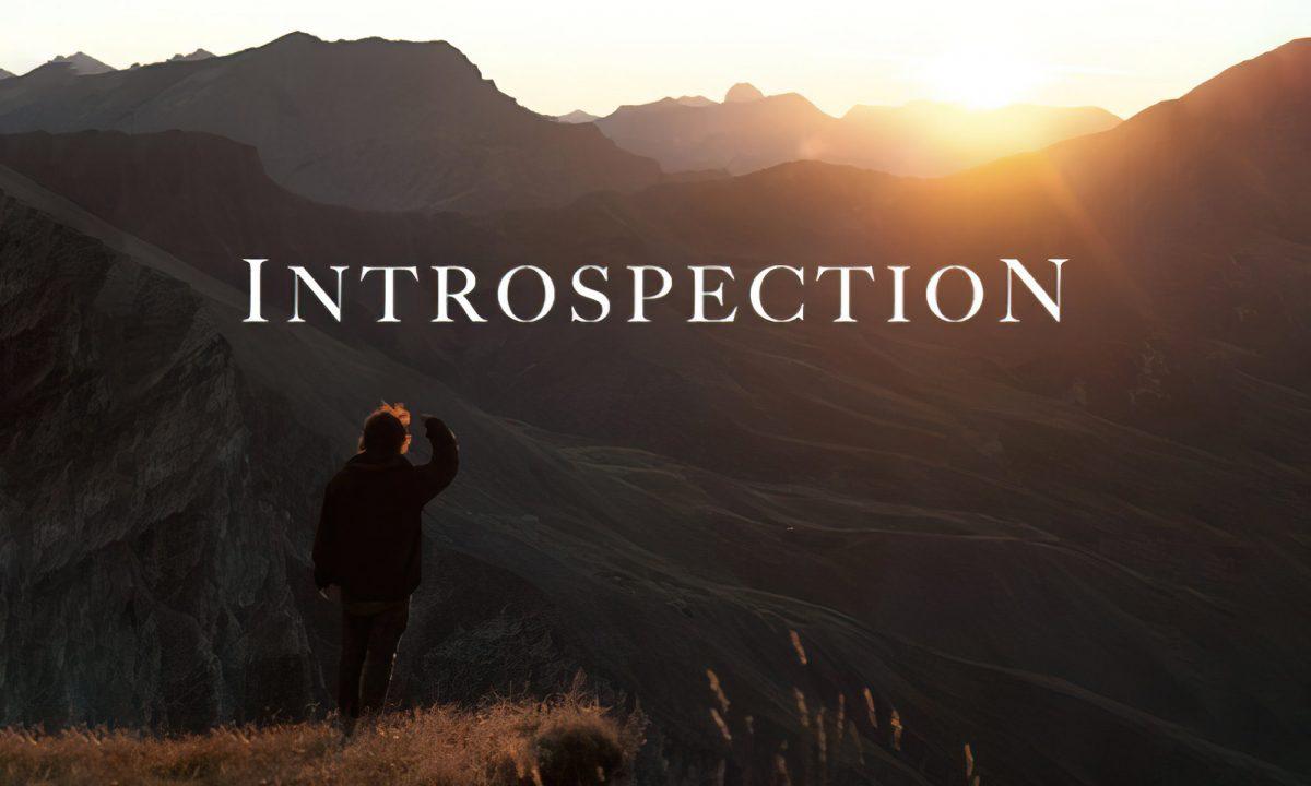 Introspection Lionel Pardo