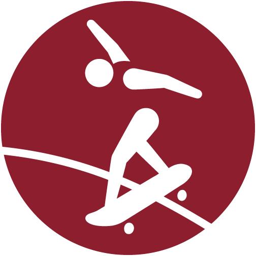 Picto JO Skateboard
